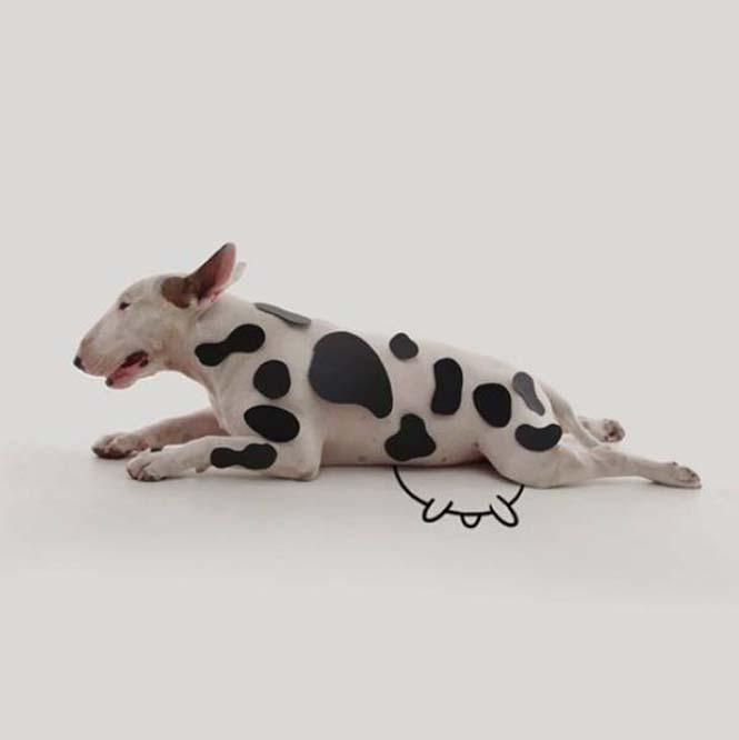 Ξεκαρδιστικά σκιτσοπορτραίτα ενός σκύλου (8)