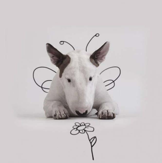 Ξεκαρδιστικά σκιτσοπορτραίτα ενός σκύλου (9)