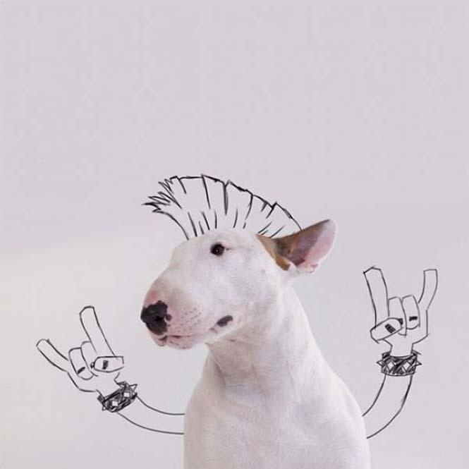 Ξεκαρδιστικά σκιτσοπορτραίτα ενός σκύλου (11)