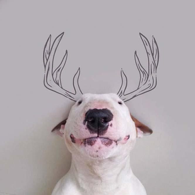Ξεκαρδιστικά σκιτσοπορτραίτα ενός σκύλου (15)