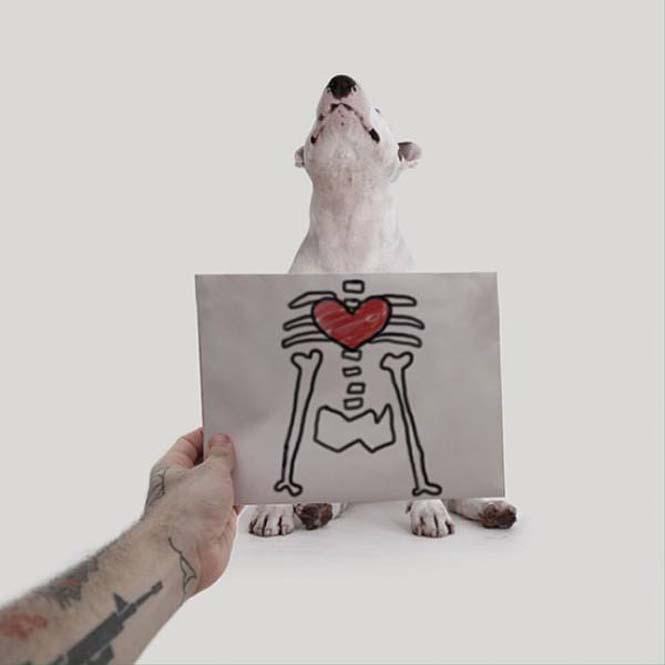 Ξεκαρδιστικά σκιτσοπορτραίτα ενός σκύλου (19)