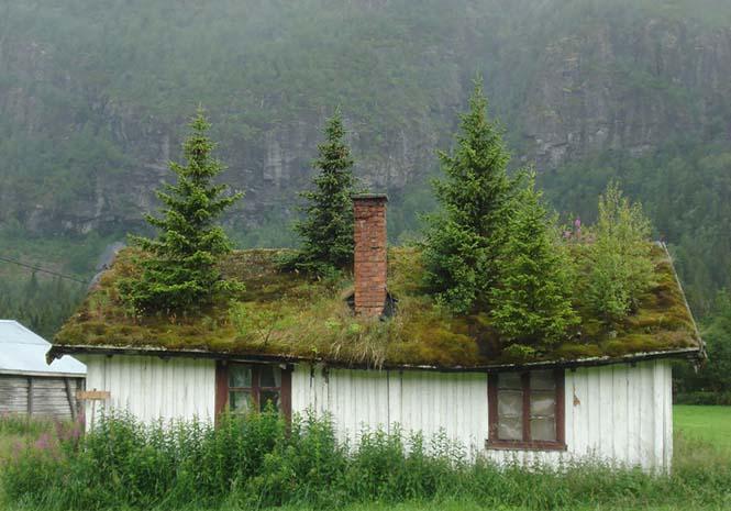Φωτογραφίες που αποδεικνύουν πως η Νορβηγία είναι βγαλμένη από παραμύθι (10)