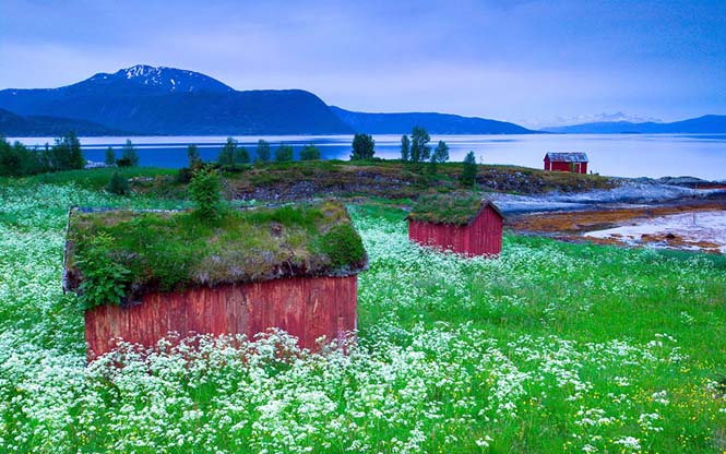 Φωτογραφίες που αποδεικνύουν πως η Νορβηγία είναι βγαλμένη από παραμύθι (11)