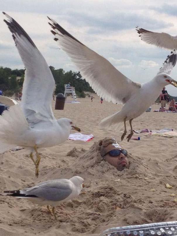 27 κωμικοτραγικά σκηνικά που θα συναντήσεις στην παραλία (24)