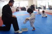 Παιδάκι κερδίζει την λευκή ζώνη με τον πιο χαριτωμένο τρόπο