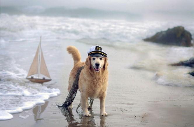 Ο πιο ακαταμάχητος καπετάνιος | Φωτογραφία της ημέρας