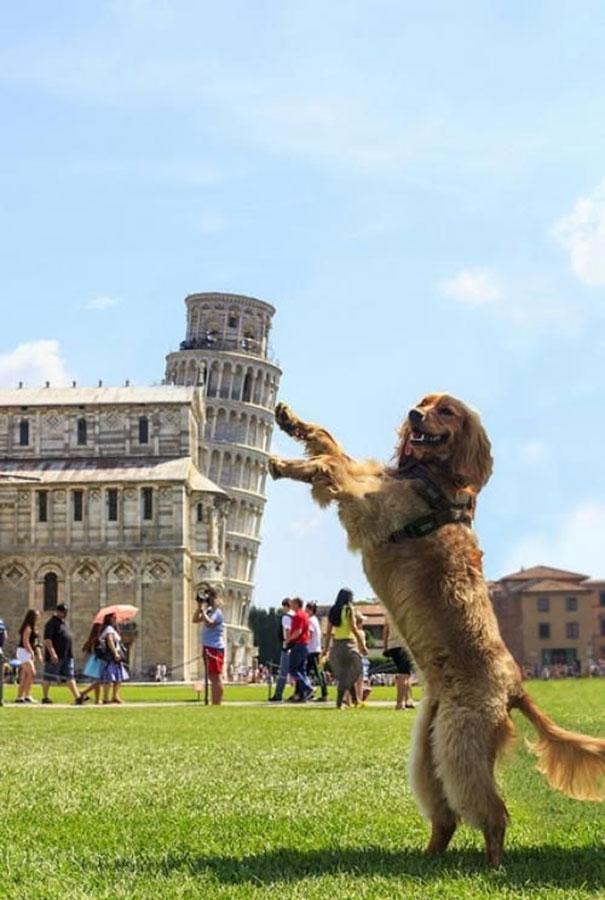 Ίσως η πιο πετυχημένη αναμνηστική φωτογραφία από τον Πύργο της Πίζας | Φωτογραφία της ημέρας