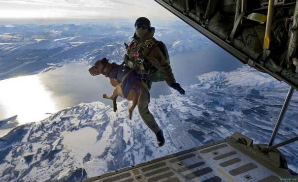 Στρατιωτικές φωτογραφίες που τραβήχτηκαν την κατάλληλη στιγμή (33)