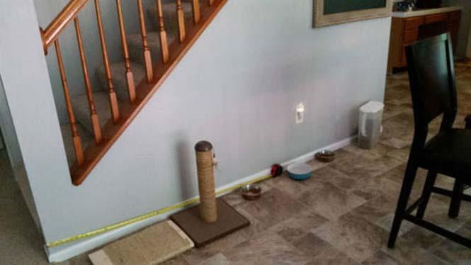 Δημιουργικός ιδιοκτήτης κατοικιδίου έφτιαξε το τέλειο σκυλόσπιτο (1)