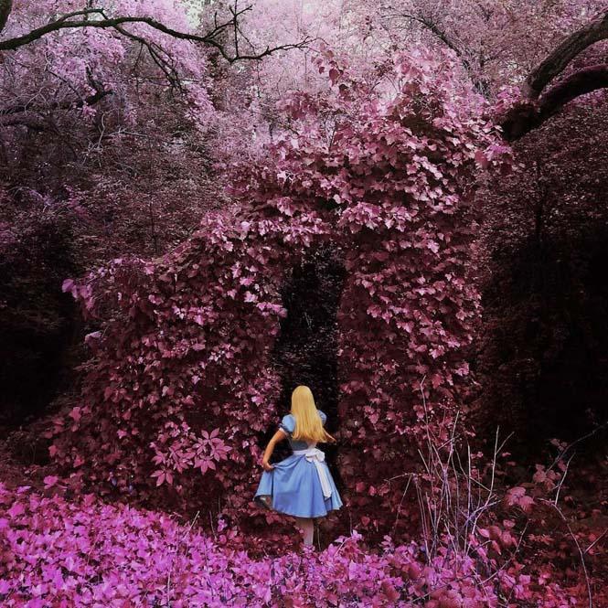 Οι εκπληκτικές φωτογραφίες μιας κοπέλας με iPhone (3)