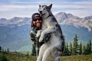 Ένας άνδρας και το wolfdog του σε επικές περιπέτειες