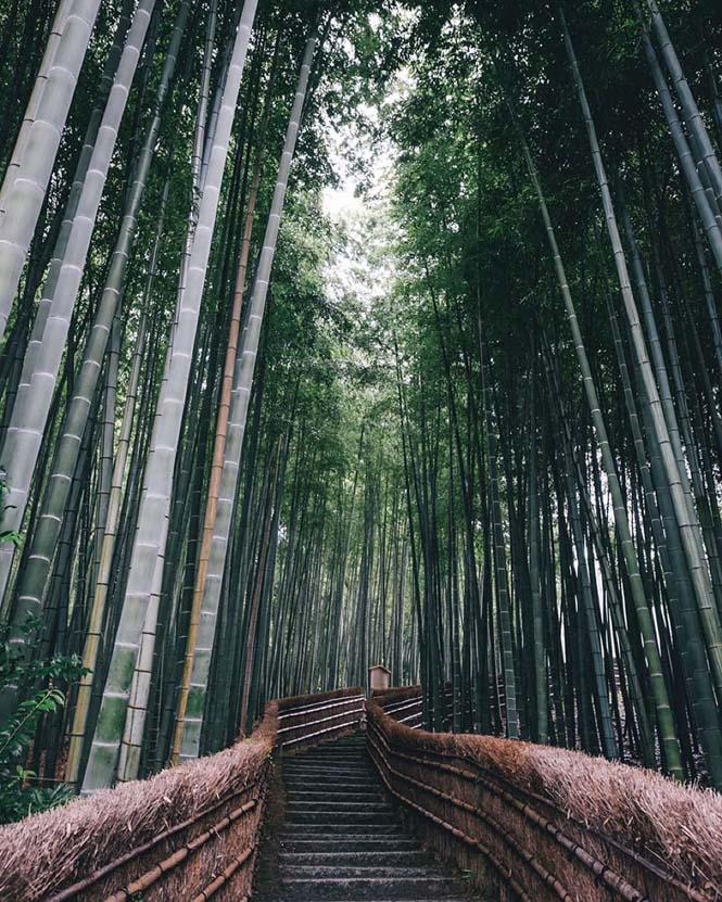 Φωτογράφος απαθανάτισε την εντυπωσιακή ομορφιά της καθημερινής ζωής στην Ιαπωνία (2)