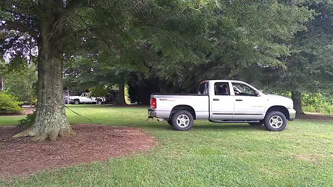 Φορτηγάκι τραβάει δένδρο