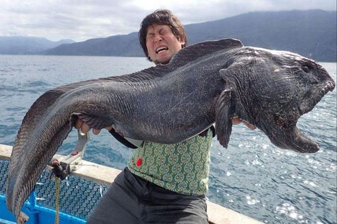 Τρομακτική ψαριά κοντά στη Φουκουσίμα | Φωτογραφία της ημέρας