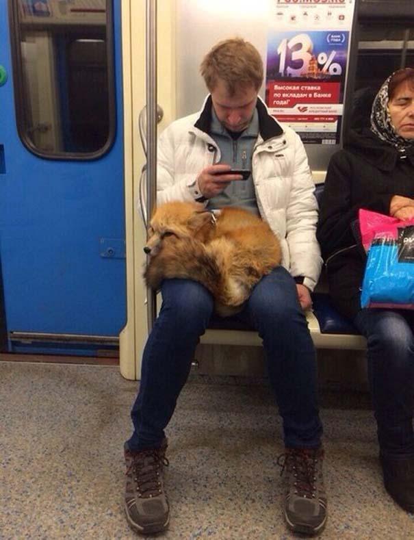 Ποτέ δεν ξέρεις τι θα συναντήσεις στο Μετρό της Ρωσίας (5)