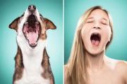 Σκύλοι και ιδιοκτήτες στην ίδια πόζα (16)
