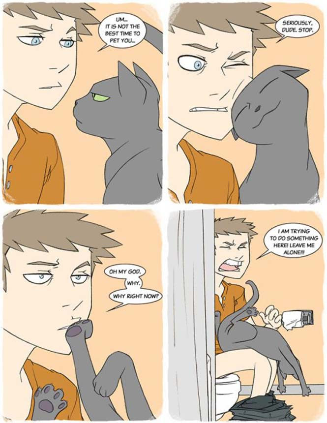 Χιουμοριστικά κόμικς δείχνουν πως είναι να έχεις γάτα (2)