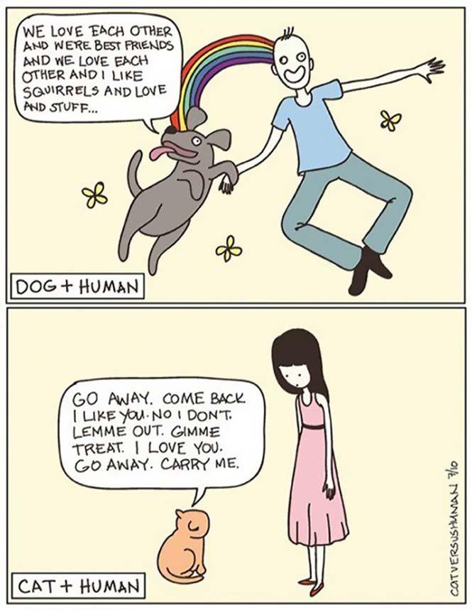 Χιουμοριστικά κόμικς δείχνουν πως είναι να έχεις γάτα (6)