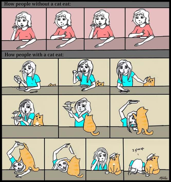 Χιουμοριστικά κόμικς δείχνουν πως είναι να έχεις γάτα (8)