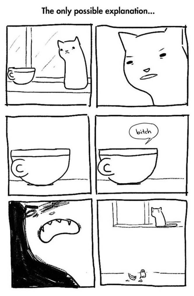 Χιουμοριστικά κόμικς δείχνουν πως είναι να έχεις γάτα (9)