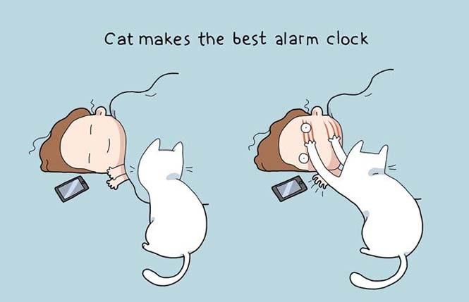 Χιουμοριστικά κόμικς δείχνουν πως είναι να έχεις γάτα (18)