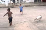 Έξυπνος σκύλος παίζει σκοινάκι