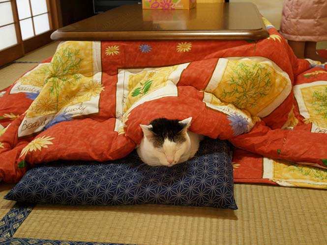 Γιαπωνέζικη εφεύρεση για να μην αποχωριστείτε ποτέ ξανά το κρεβάτι σας (2)