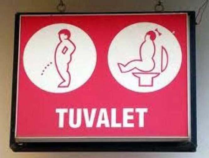 Ξεχωρίζοντας ανδρικές και γυναικείες τουαλέτες με φαντασία (8)