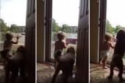 Μωρό και σκύλος υποδέχονται τον μπαμπά