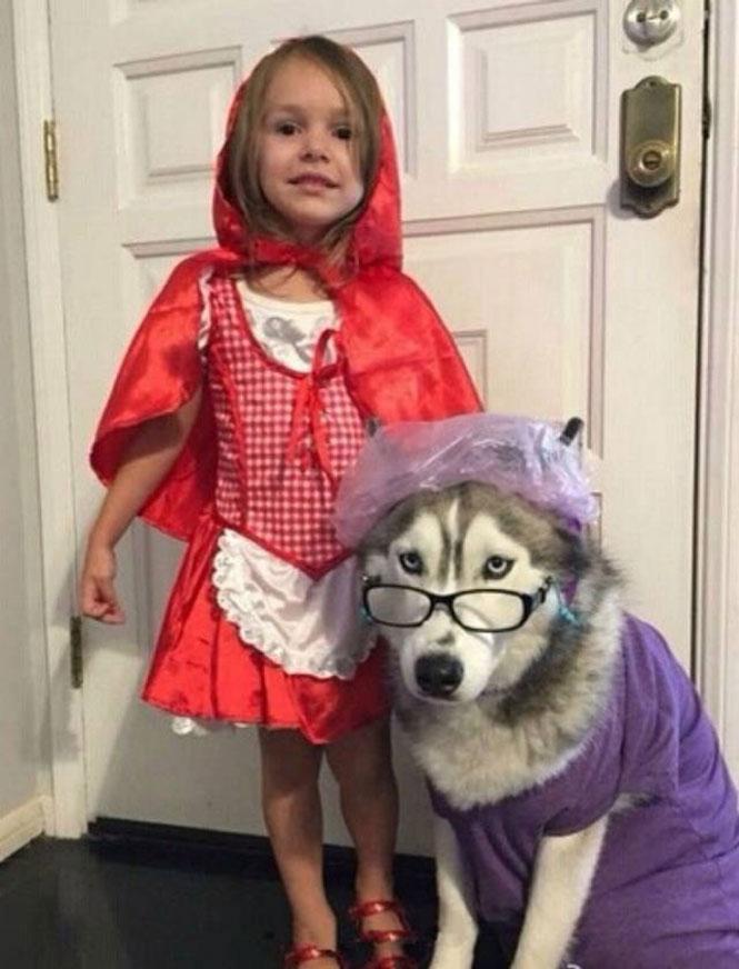 Η κοκκινοσκουφίτσα και ο κακός λύκος στην πιο χαριτωμένη εκδοχή | Φωτογραφία της ημέρας