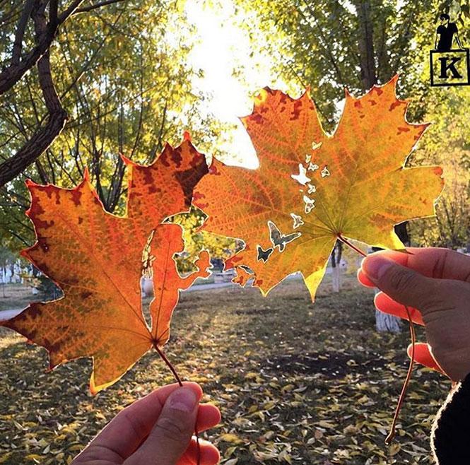 Δυο φθινοπωρινά φύλλα συνθέτουν κάτι μαγικό | Φωτογραφία της ημέρας