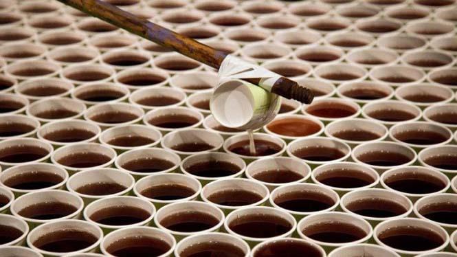 Καλλιτέχνης χρησιμοποίησε 66.000 χάρτινα ποτήρια για να δημιουργήσει ένα γιγάντιο μωσαϊκό (3)