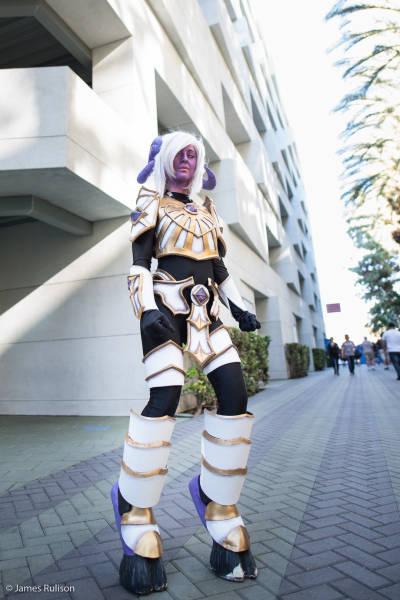 Εντυπωσιακά cosplay από την BlizzCon 2015 (30)