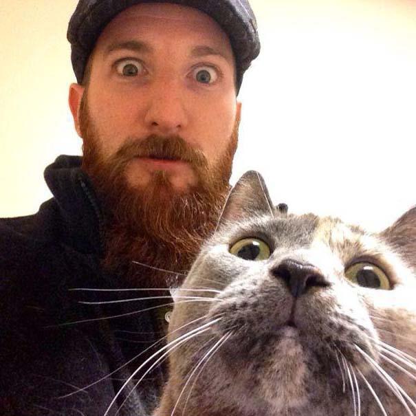 Γάτες που... κάνουν τα δικά τους! #21 (8)