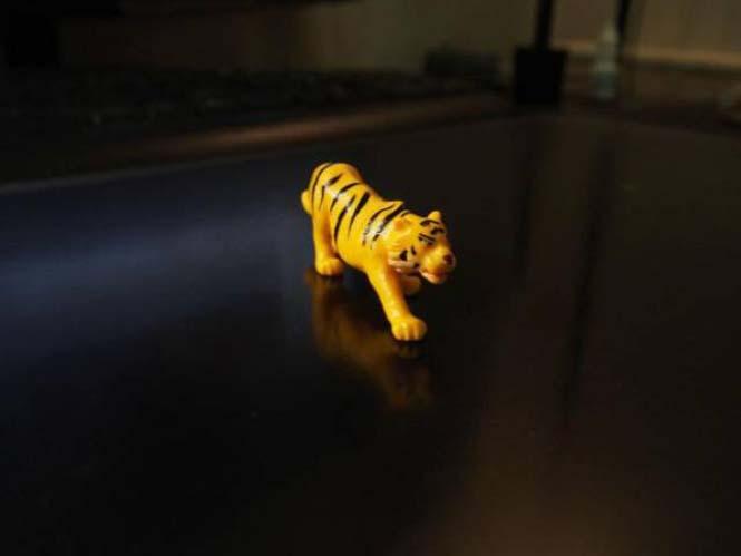 Μεταμόρφωση πλαστικής τίγρης (1)