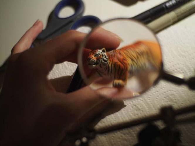 Μεταμόρφωση πλαστικής τίγρης (8)