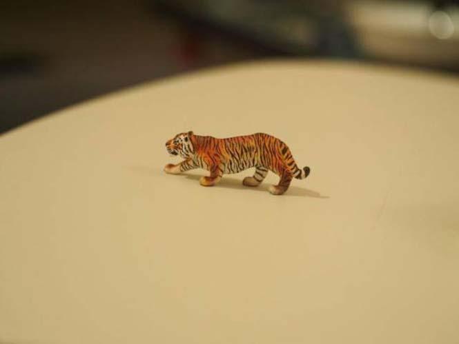 Μεταμόρφωση πλαστικής τίγρης (9)