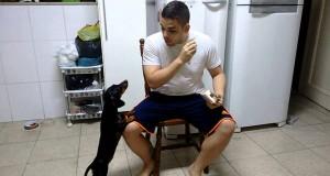 Βρήκε ένα πανέξυπνο κόλπο για να κάνει τον σκύλο του να πάρει το φάρμακο του (Video)