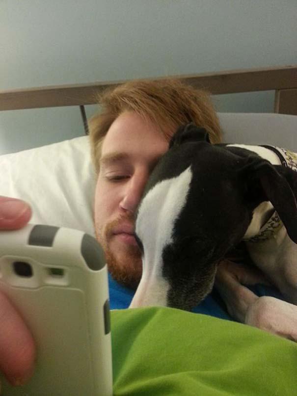 Σκύλοι που λατρεύουν να εισβάλλουν στον προσωπικό μας χώρο (4)