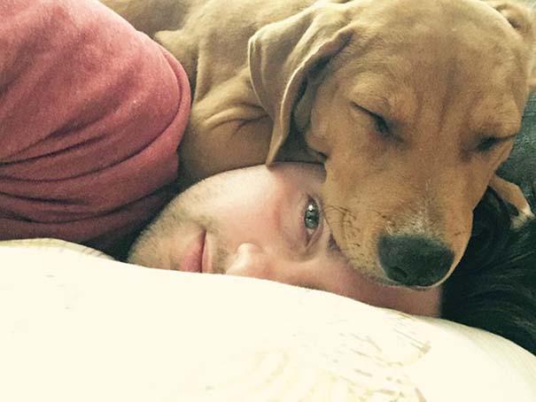 Σκύλοι που λατρεύουν να εισβάλλουν στον προσωπικό μας χώρο (7)