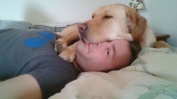 Σκύλοι που λατρεύουν να εισβάλλουν στον προσωπικό μας χώρο (2)