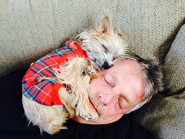 Σκύλοι που λατρεύουν να εισβάλλουν στον προσωπικό μας χώρο (15)