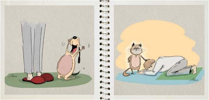 Οι διαφορές του σκύλου με την γάτα σε 5 σκίτσα (2)