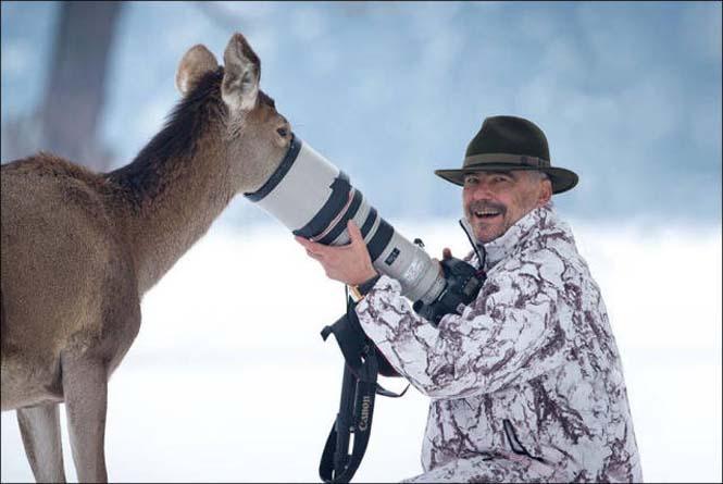 Φωτογράφοι άγριας φύσης επί το έργον (4)