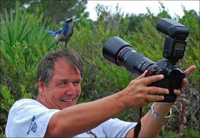 Φωτογράφοι άγριας φύσης επί το έργον (5)