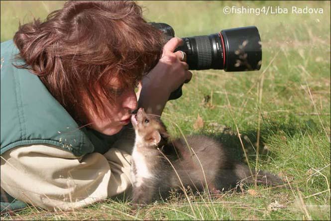 Φωτογράφοι άγριας φύσης επί το έργον (6)