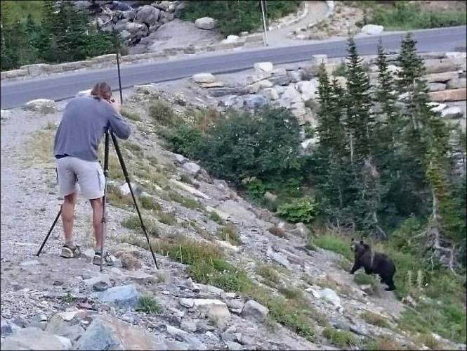 Φωτογράφοι άγριας φύσης επί το έργον (10)