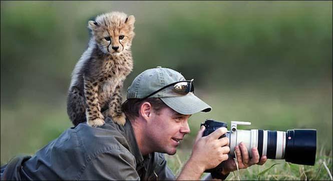 Φωτογράφοι άγριας φύσης επί το έργον (11)