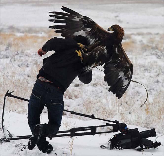 Φωτογράφοι άγριας φύσης επί το έργον (15)