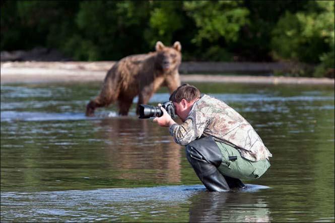 Φωτογράφοι άγριας φύσης επί το έργον (20)